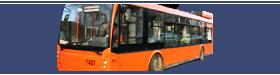 Нижегородские троллейбусы